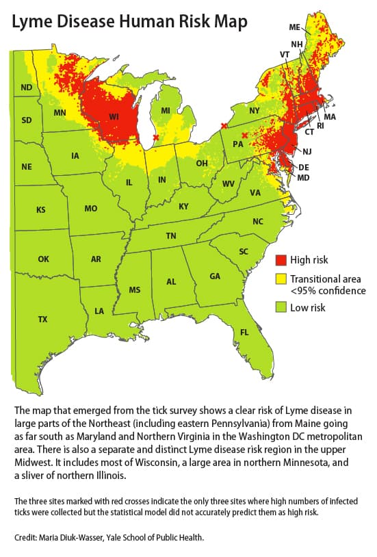Lyme Disease Not As Likely In Nc But Caution Should Prevail North