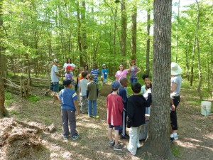 A counselor from Schoolhouse of Wonder takes kids out into the woods where they learn how to identify trees and plants.