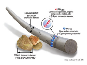 An illustration of particulate matter, which the EPA says can be harmful to human health. Graphic courtesy U.S. EPA