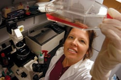 Lee-Ann Jaykus in her lab. Image courtesy NC State University
