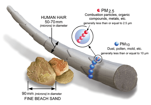 Fine particulates are extremely small, which makes them so dangerous. They can penetrate human lung tissue and reach the bloodstream. Source: US EPA