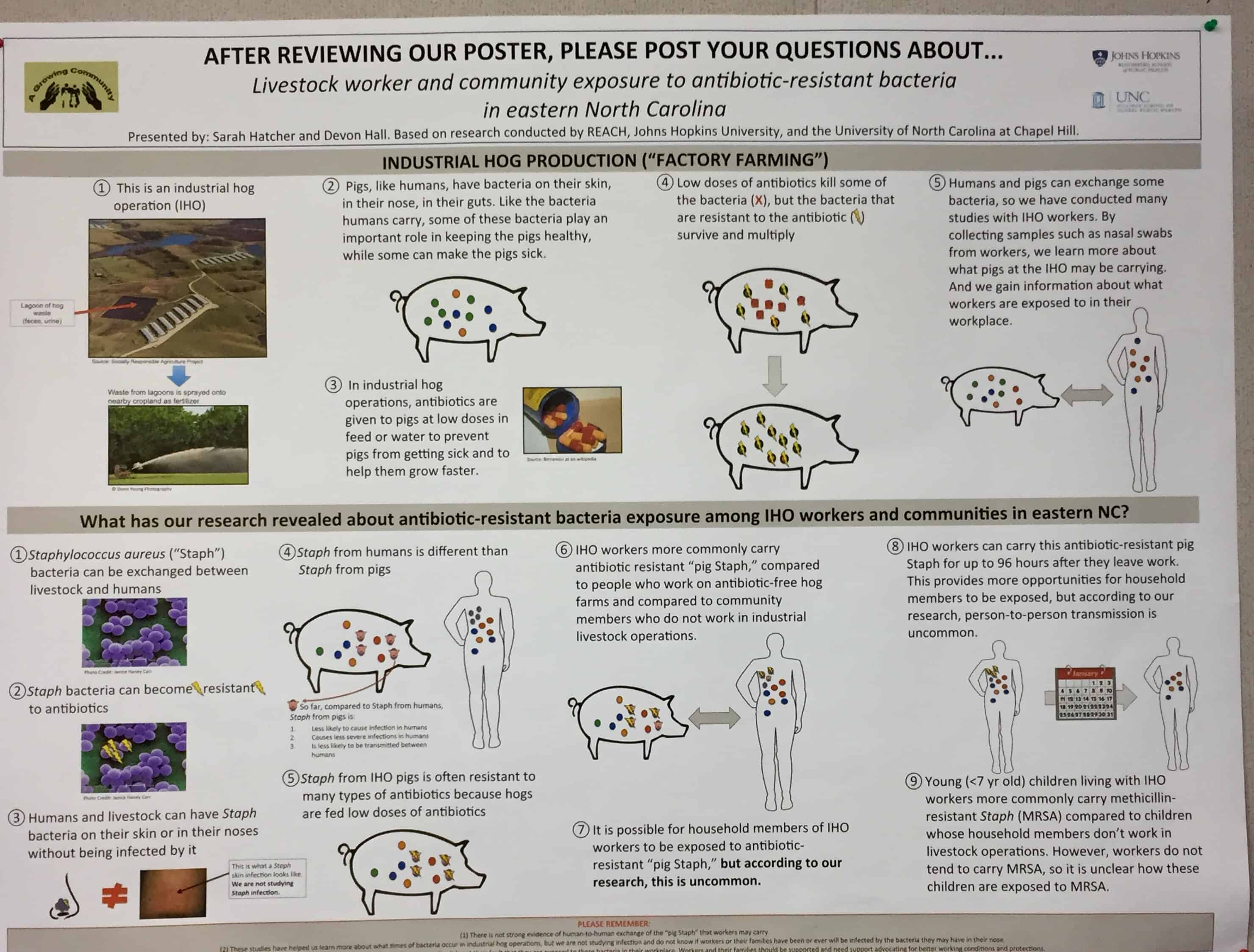 "shows a poster presentation of study entitled, ""Livestock worker and community exposure to antibiotic-resistance bacteria in eastern North Carolina."
