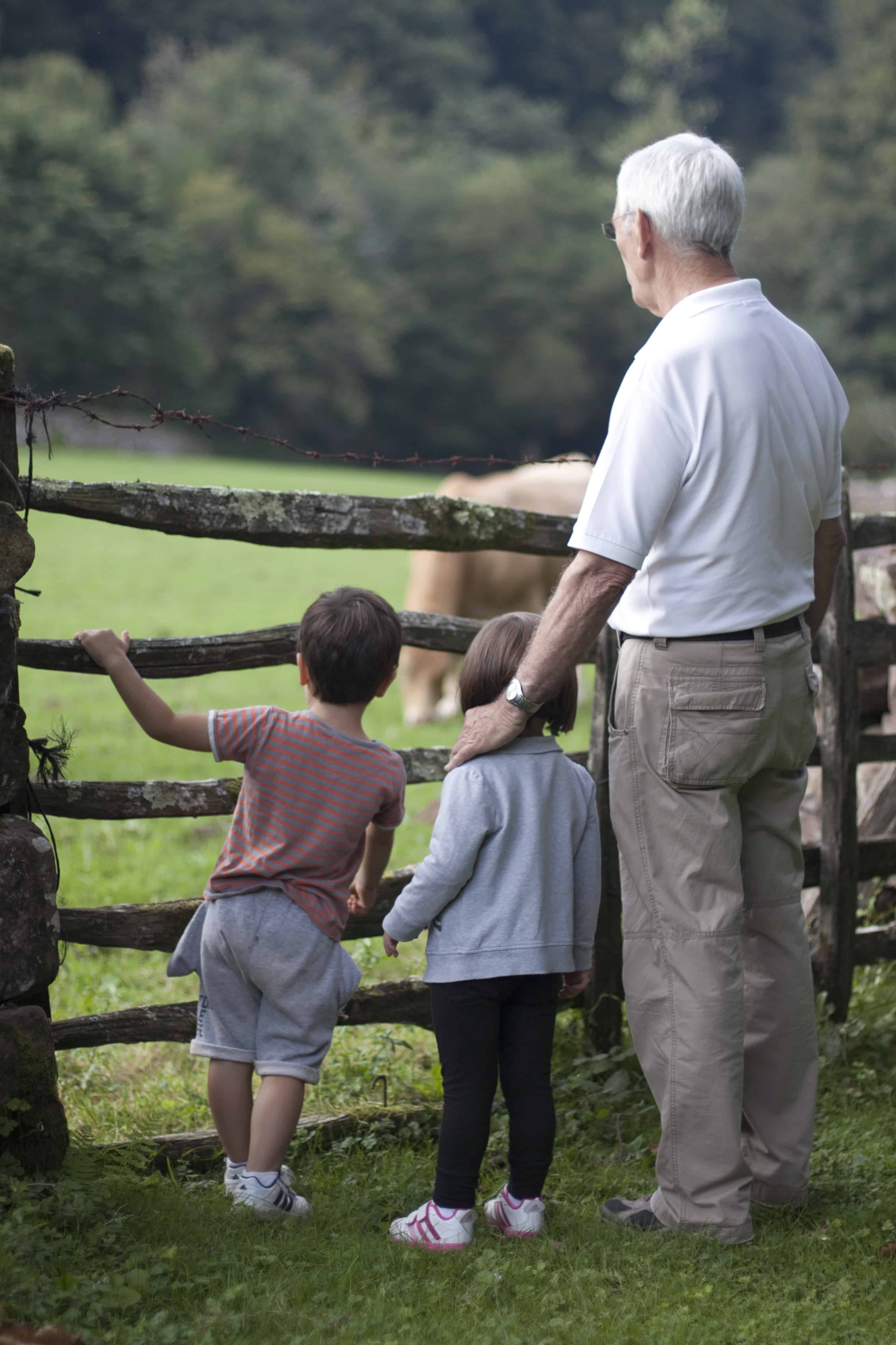 Will the New Foster Care Law Give Grandparents a Hand