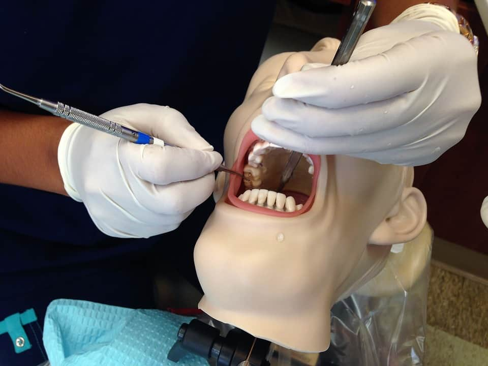 Dental therapy might not be what you think, but is it for